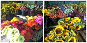 flowers in the cooler